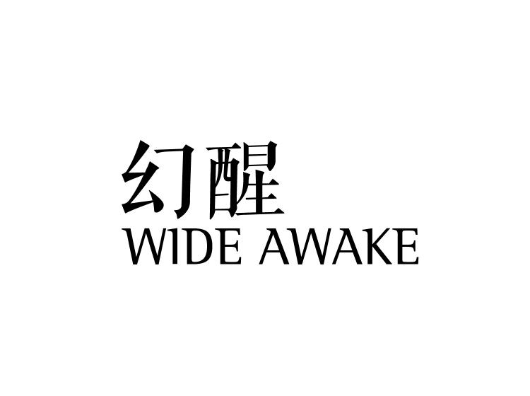 幻醒wideawake