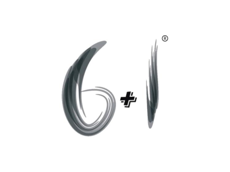 商标代理机构-尚标-6+1