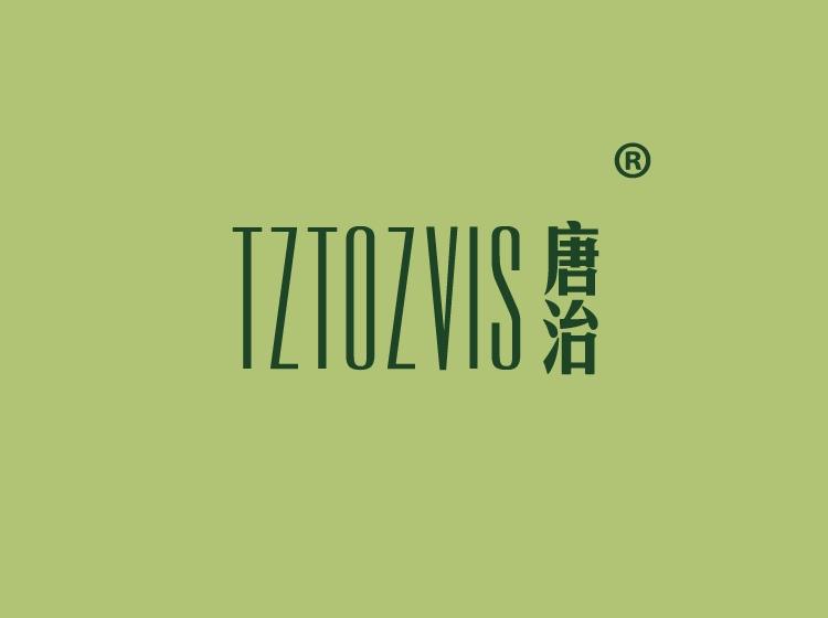 唐治 TZTOZVIS