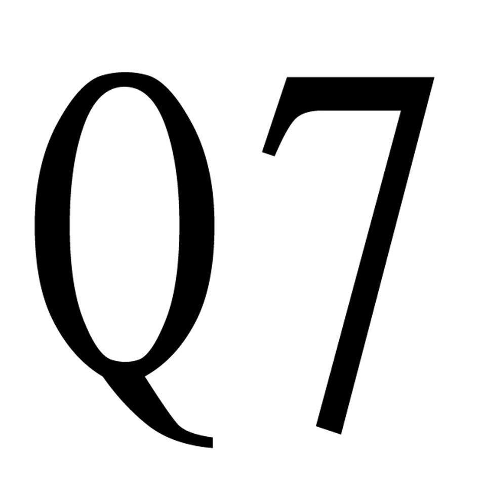 Q 7商标转让