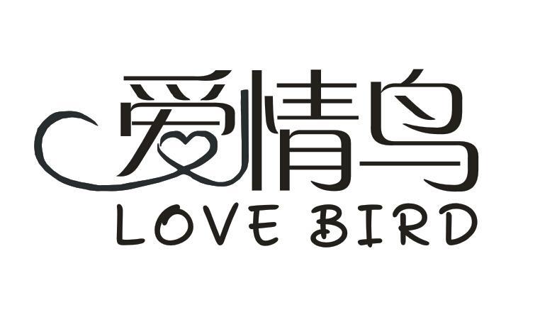 爱情鸟  LOVE BIRD