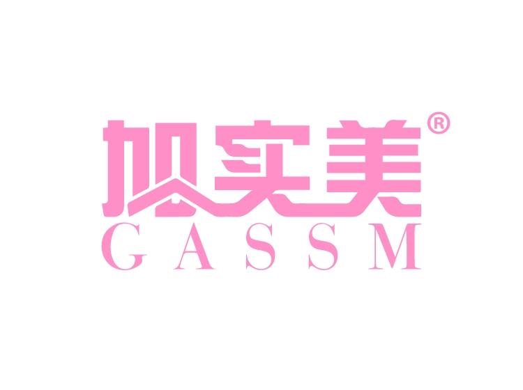加实美 GASSM