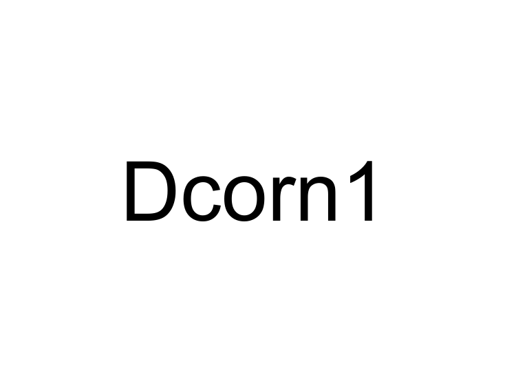 Dcorn1
