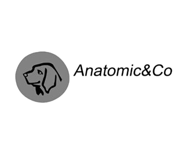 ANATOMIC&CO