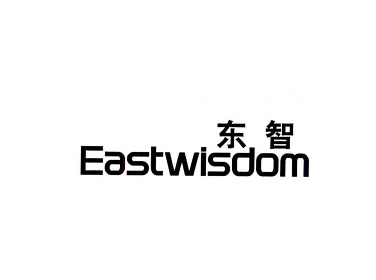 东智 EASTWLSDOM