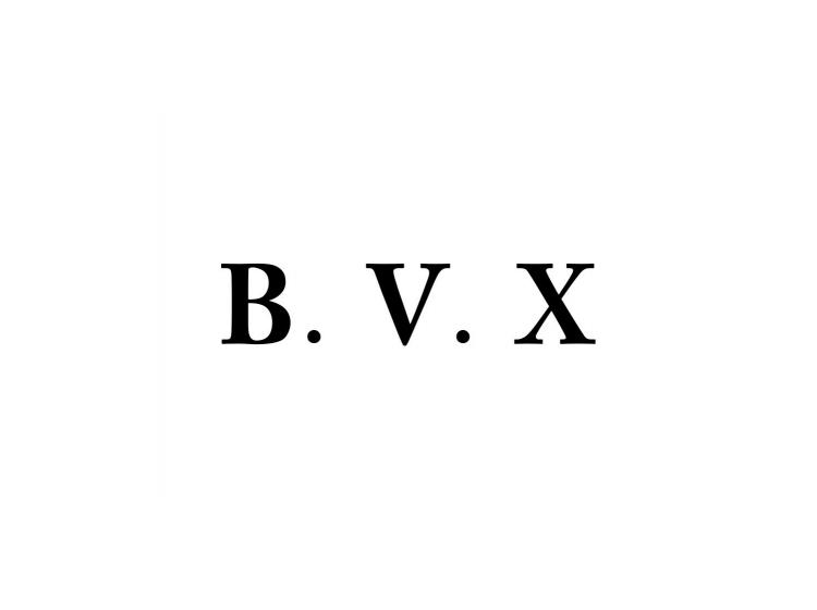 BVX商标转让