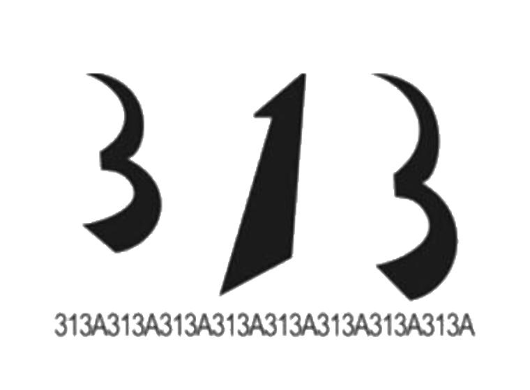 313 313A313A313A313A313A313A313A313A