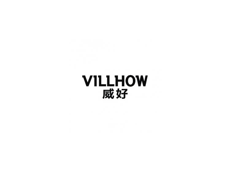 威好 VILLHOW