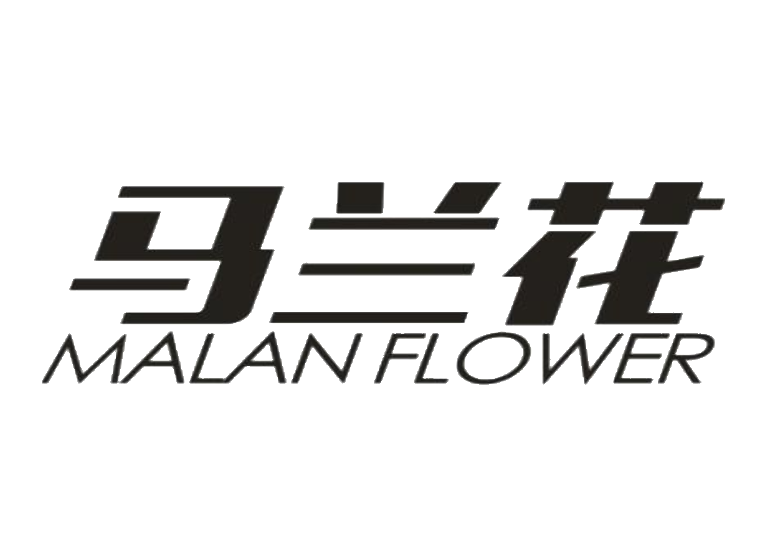 马兰花 MALANFLOWER