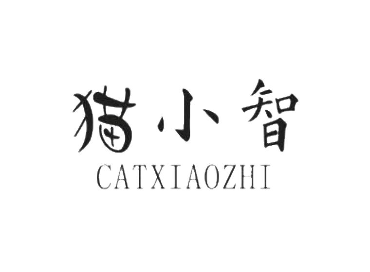 猫小智 CATXIAOZHI