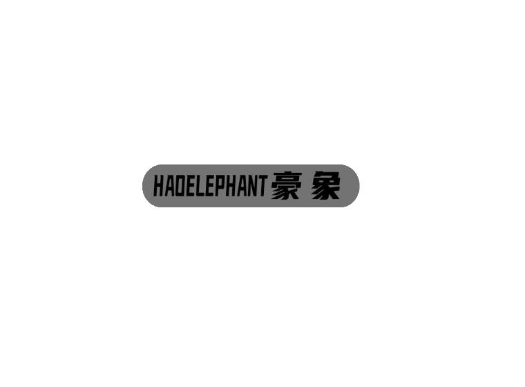 HAOELEPHANT豪象