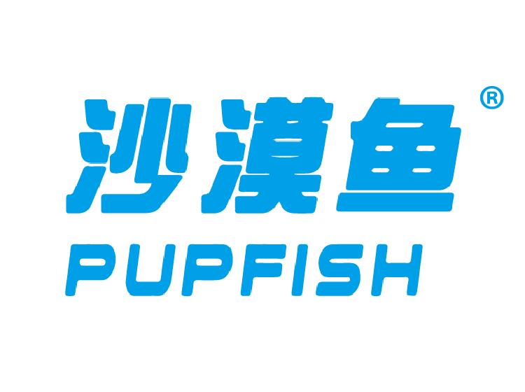 沙漠鱼 PUPFISH
