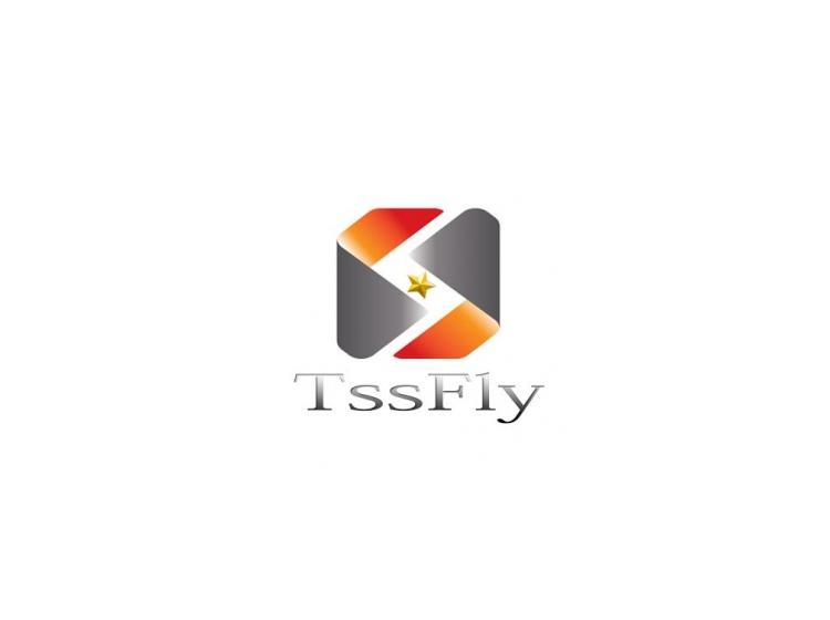 TSSFIY