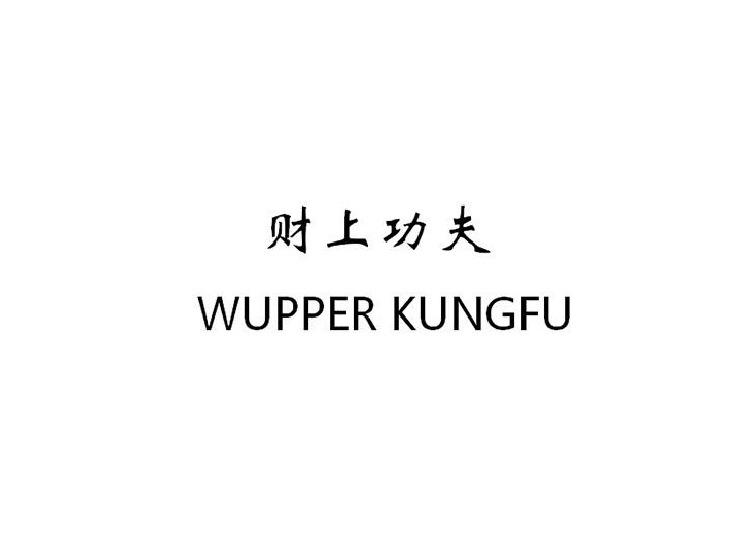 财上功夫 WUPPER KUNGFU