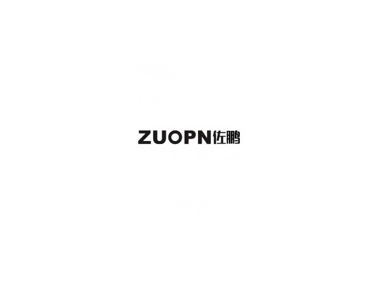 佐鹏 ZUOPN