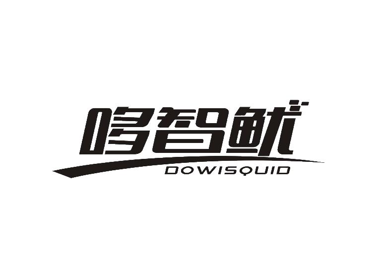 哆智鱿 DOWISQUID